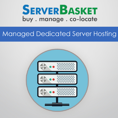 Managed Dedicated Server Hosting India