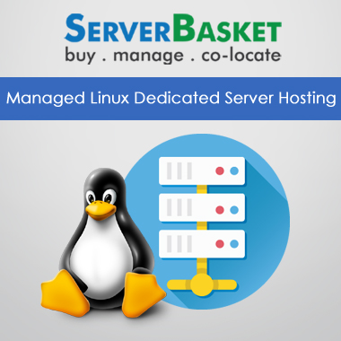 Managed Linux Dedicated Server Hosting