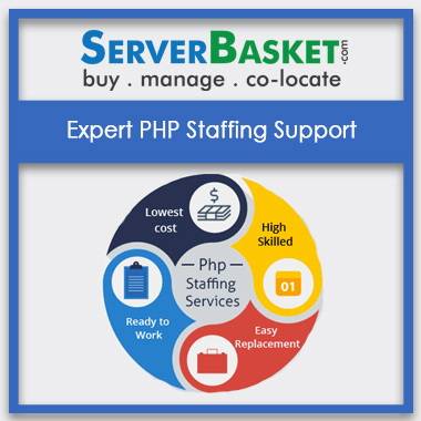 Buy Expert PHP Staffing Support In India