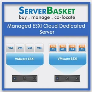 Managed ESXi Cloud Dedicated Server