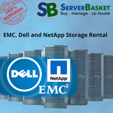 Dell and NetApp Storage Rental