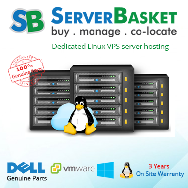 Linux VPS Dedicated Hosting Delhi