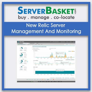 Buy New Relic Server Management And Monitoring In India