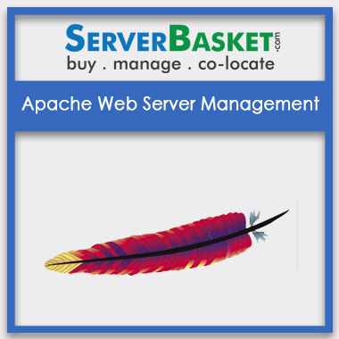 Buy Apache Web Server Management In India