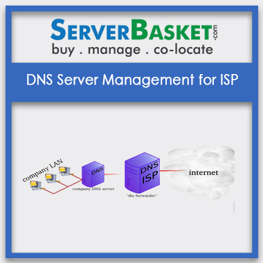 Buy DNS Server Management for ISP In India
