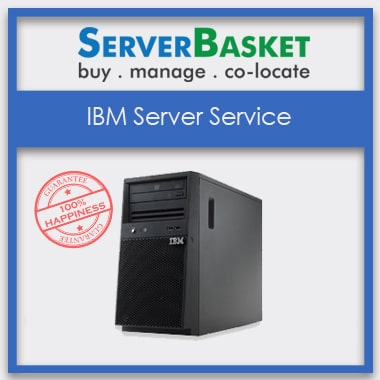 IBM Server Services in Delhi