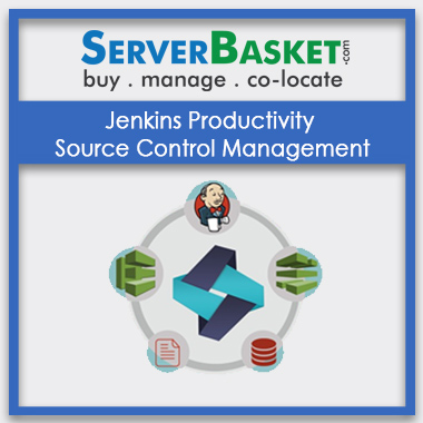 Buy Jenkins Productivity Source Control Management In India