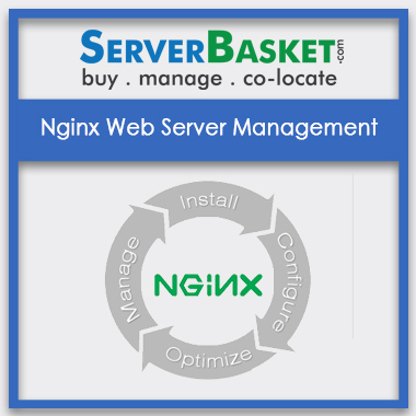 Buy Nginx Web Server Management In India