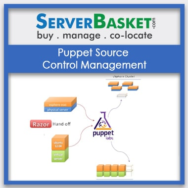 Buy Puppet Source Control Management In India