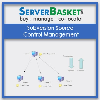 Buy Subversion Source Control Management In India