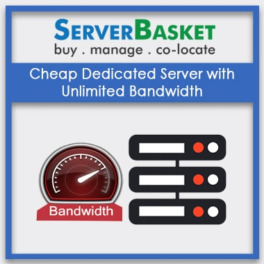 Buy Cheap Dedicated Server Unlimited Bandwidth from Server Basket in India