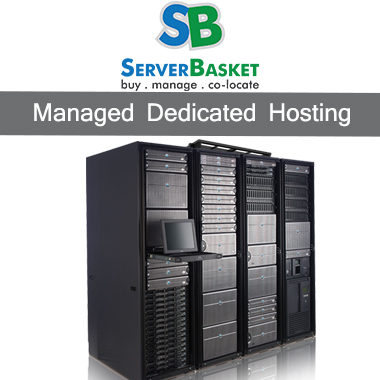 Managed Dedicated Hosting Services