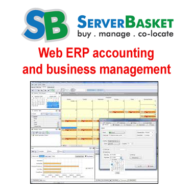 Web ERP Accounting