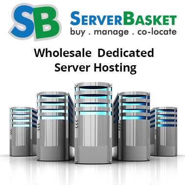 Wholesale dedicated server hosting