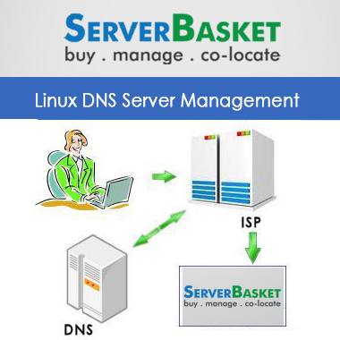 DNS Server Management, DNS Server Services, DNS Server Support, DNS Server for ISP Support