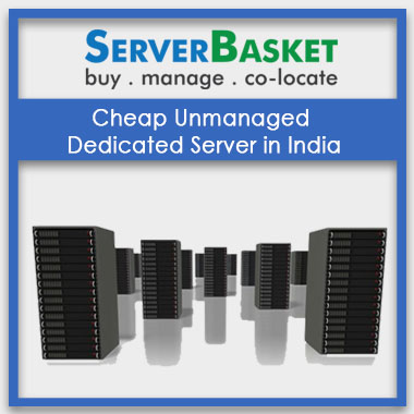 Buy Cheap Unmanaged Dedicated Server in India from Server basket at Best Price Online