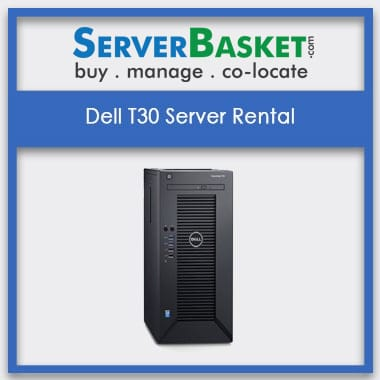 Dell T30 Server Rental In India