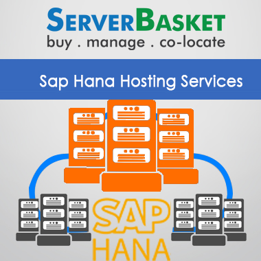 Sap Hana Hosting services,Sap Hana Hosting india, Sap Hana Hosting providers