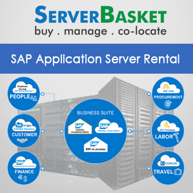 sap application server rental,rental sap server,Cheap sap server rental