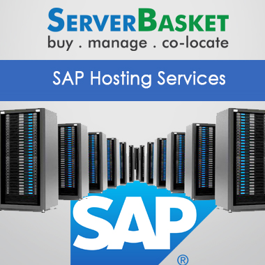 sap hosting services,sap hosting services india, best sap hosting services,sap hosting services at low price