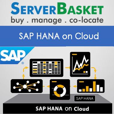 SAP Hana on Cloud, SAP hana Cloud Platform, SAP hana Cloud Hosting, Managed SAP hana CLoud Services