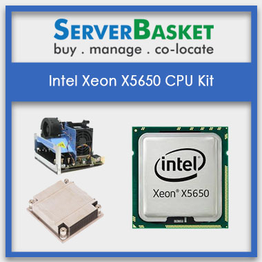 Buy Intel Xeon X5650 Processor Online from Server Basket , Intel Xeon X5650 CPU Kit, Intel Xeon X5650 CPU Kit at Lowest price, Intel Xeon X5650 CPU Kit in India