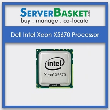 Dell Intel Xeon X5670 Processor | Dell Supported Processors | Buy Dell Intel Xeon X5670 Processor Online from Server Basket, Buy Dell Xeon X5670 CPU Online, Buy Intel Xeon X5670 Processor in India, Used Intel Xeon Processors