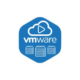 Start Vmware Hosting Service