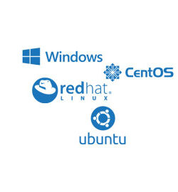 any os ready windows, linux for dedicated server